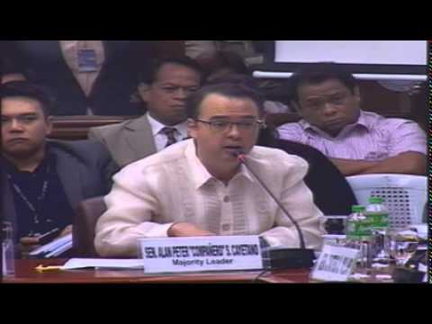 Committee on Public Order and Dangerous Drugs (February 12, 2015)