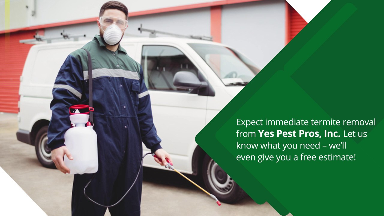 Yes Pest Pros, Inc. | The Best Pesky Termite Solution For Your Home