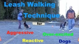 Leash Walking Technique for Aggressive, Reactive or Over Excited Dogs
