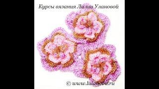Цветок Волшебный - вязание крючком