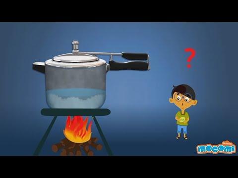 How does a Pressure Cooker Work?   Mocomi Kids
