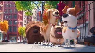 Трейлер: Тайная жизнь домашних животных 2016 [рус, English subtitles, 俄文版预告片]