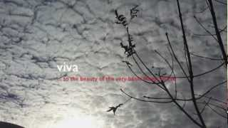 Viva  - by Dirk Maassen (Project Ascolta !)