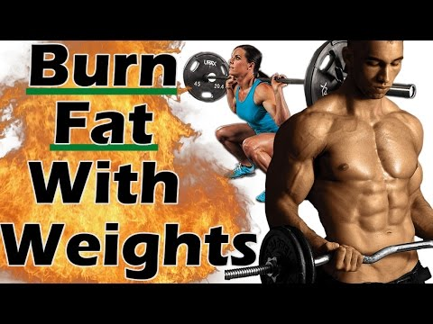 Weight Training for Weight Loss – How Weight Training will help you Slim Down