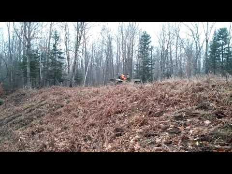 2013 deer season 46 Willy's Jeep