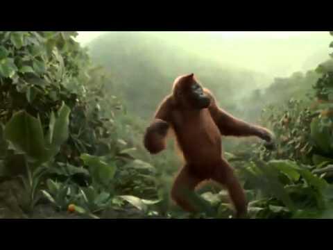 Танцующая обезьяна  Всем хорошего дня! online video cutter com