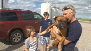 CNN: Family searches for dog after Joplin tornado