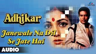 Adhikar : Janewale Na Dil Se Jate Hai Full Audio Song | Rajesh Khanna, Tina Muneem |