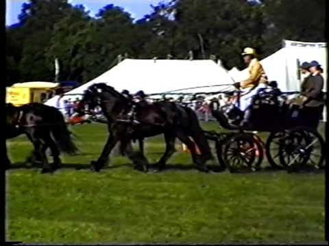 HRH The Duke of Edinburgh driving at Sandringham 1993