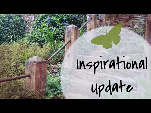 Weekly Inspirational Update #1