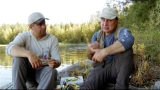 Ловля на мелководье в средней полосе России. Рыболовная Школа - 16