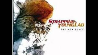 Watch Strapping Young Lad Fucker video
