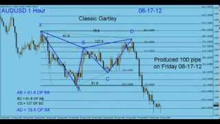 My Forex Magic Wave. How to calculate Harmonic Pattern Gartley By G. Samdani