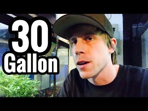30 Gallon Canister Filter for Aquarium?