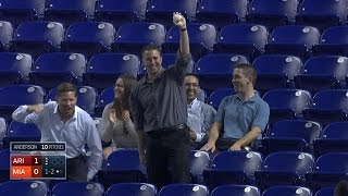 Fan makes a barehanded catch in the stands