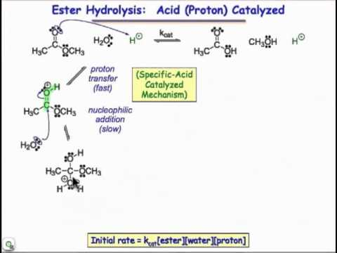 Nicotinamide adenine dinucleotide