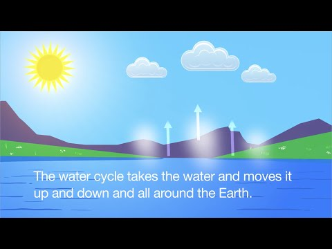 Water Cycle Song Learn the Water Cycle for Kids