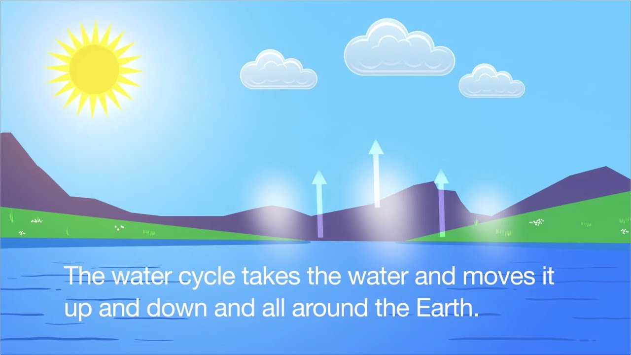 Water Cycle Song Animated Youtube