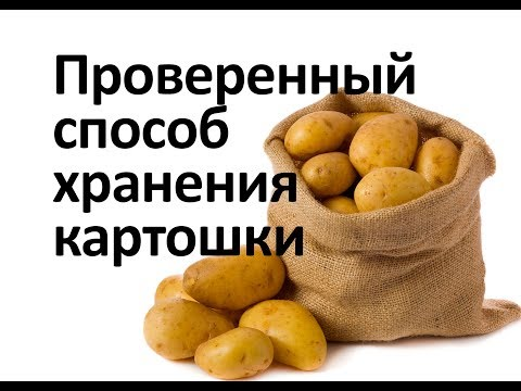 Картошка хранится долго и не портится   хозяйство   сохранить   картофеле   картошку   картошке   бороться   умное   сухая   гниль   зиму