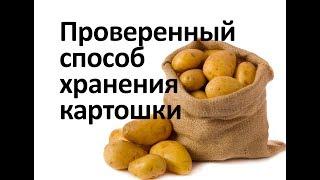 Картошка хранится долго и не портится