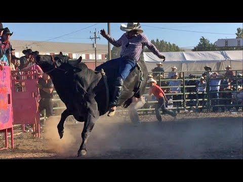 DAJANDO HUELLA LOS TOROS DIVINOS EN KING CITY CALIFORNIA