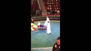 Воздушная гимнастка цирка упала с высоты в Астане