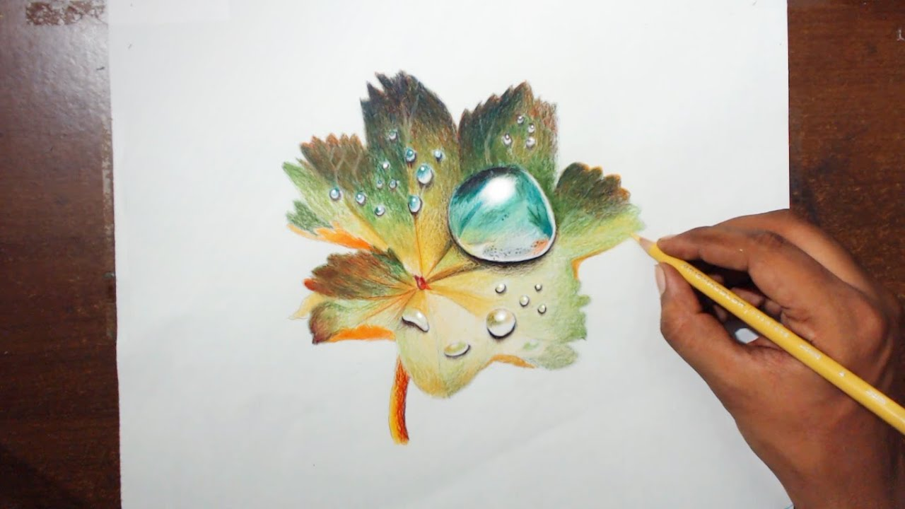 Drawing water drops on a leaf prismacolor pencils