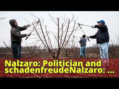 Nalzaro: Politician and schadenfreudeNalzaro: Politician and schadenfreude
