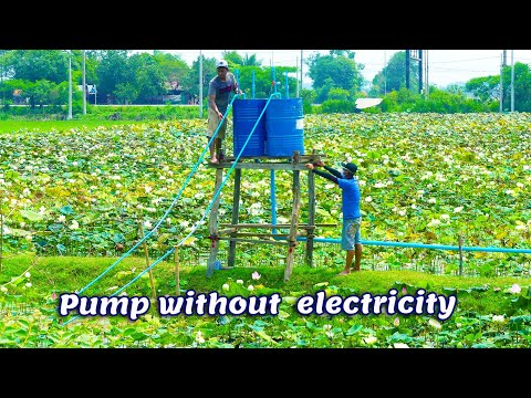 Free Energy Water Pump for lotus farm – Pump Water Without Electricity Big project