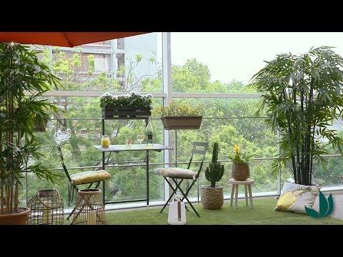 Recette de smoothie Douceur - Jardinerie Truffaut TV - YouTube