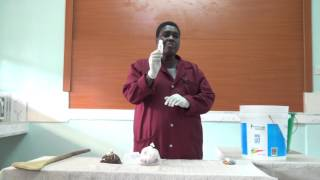 Chemical Processing by RODI Kenya making detrgents Lesson 1