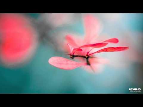 MBSR - Body Scan Meditation - 30 Minuten