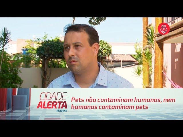Coronavírus: Pets não contaminam humanos, nem humanos contaminam pets