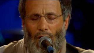 Yusuf - Peace Train (Live Yusuf