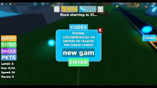 Roblox Legend Of The Speed First Code