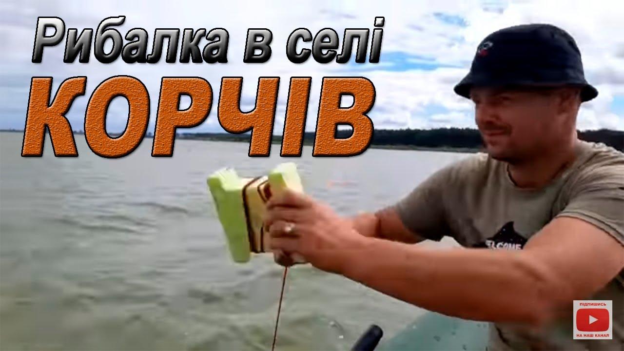 Кукурудза VS Тигровий горіх в селі Корчів