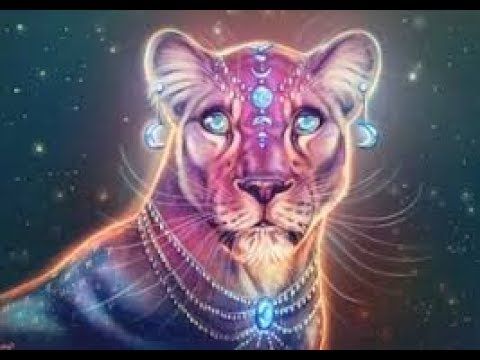 Lionsgate Portal 8/8 Allow the Energies Through.