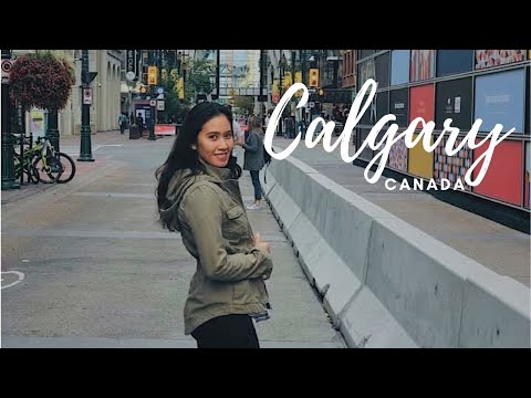 TRAVEL VLOG | FIRST TIME IN CALGARY ALBERTA, CANADA | FAIRMONT PALLISER IN CALGARY