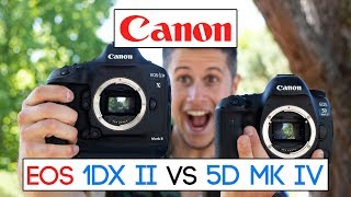 Which one is better for you? Canon EOS 1Dx MK II vs Canon EOS 5D MK IV (english)