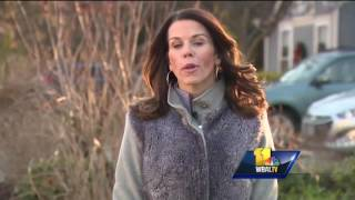 Video: Tiny Houses Have A Huge Problem In Anne Arundel County