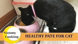 Homemade Cat Food - Make Pate For Cats | YUMMY COOKING