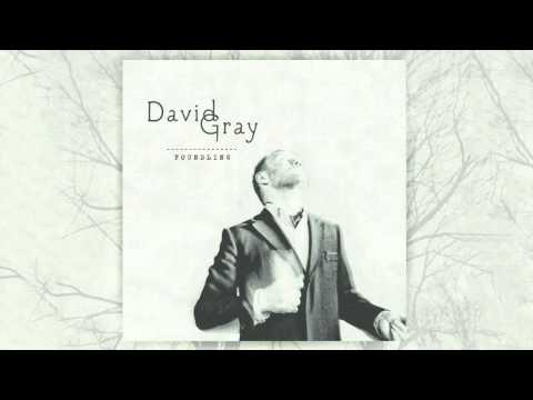 David Gray - Only The Wine (Official Audio)