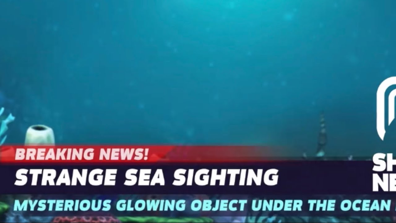 STRANGE SEA SIGHTING! TEASER PART 2 - Hungry Shark World