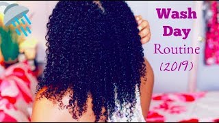 My Natural Curly Wash Day Routine (2019)