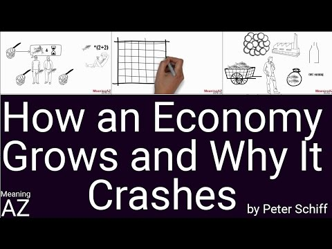How an Economy Grows and Why It Crashes by Peter Schiff ; Animated Book Summary