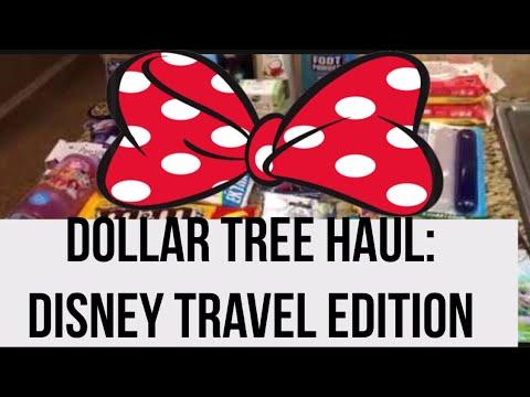 Dollar Tree Haul: Travel Ideas Disney Bound!