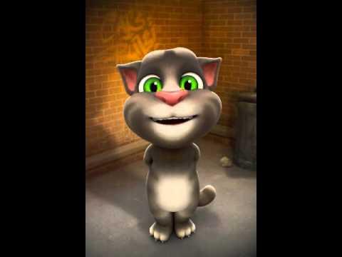Gato tom canta la vaca lola y el baile del serrucho  YouTube
