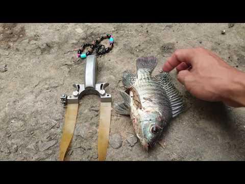 Xách ná đi săn cá | Săn bắt SÓC TRĂNG |