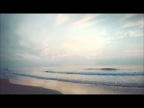 Polica - Wandering Star (Tropics Remix)