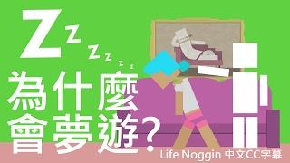 life noggin 為什麼會夢遊 中文cc字幕